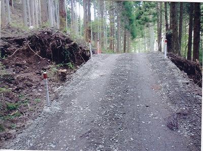 塩ノ平への林道